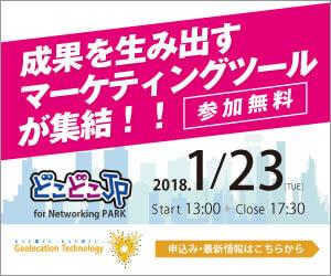 networkingpark_300x250